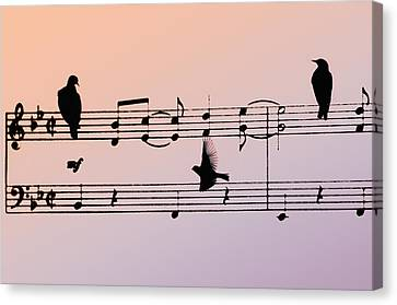 Songbirds Canvas Print by Bill Cannon
