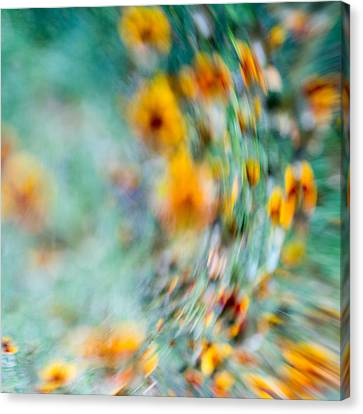 Canvas Print featuring the photograph Sonic by Darryl Dalton