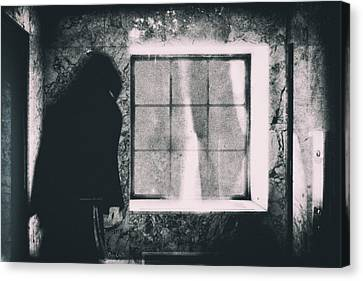 Canvas Print featuring the photograph Sonneteer by Bob Orsillo