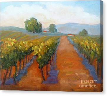 Sonoma Vineyard Canvas Print by Carolyn Jarvis