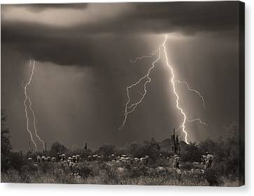 Sonoran Desert Storm - Sepia Canvas Print by James BO  Insogna
