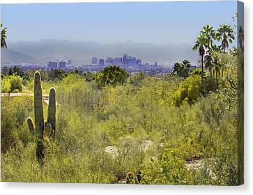 Sonoran Desert With Phoenix Skyline Canvas Print
