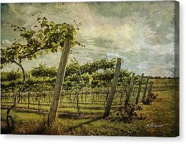 Soon There Will Be Wine Canvas Print by Jeff Swanson
