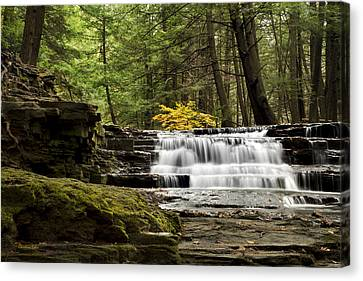 Soothing Waters Canvas Print by Christina Rollo