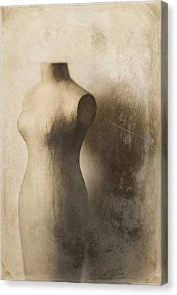 Sophistication Canvas Print by Amy Weiss