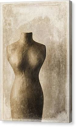 Sophistication II Canvas Print by Amy Weiss