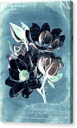 Sophisticated - Floral Ccc Canvas Print by Variance Collections