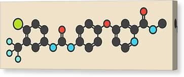 Sorafenib Cancer Drug Molecule Canvas Print by Molekuul