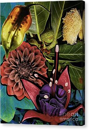 Sorrellism Collage 1 Canvas Print by Susan Sorrell