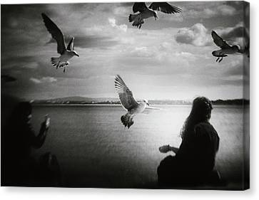 Flying Seagull Canvas Print - Soul Call by Laura Mexia