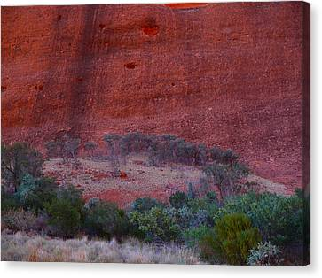 Canvas Print featuring the photograph Soul Gathering by Evelyn Tambour