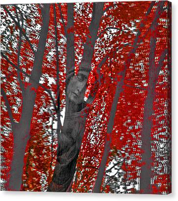 Soul Of The Trees Canvas Print
