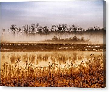 Sounds Of Silence Canvas Print