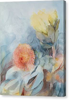 South Africa Protea Canvas Print by Karen Armitage