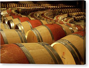 Cellar Canvas Print - South America, Chile, Colchagua by Jaynes Gallery