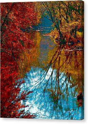 South Anna River Reflections Canvas Print