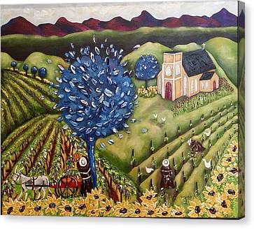 South Australia Vineyard Canvas Print