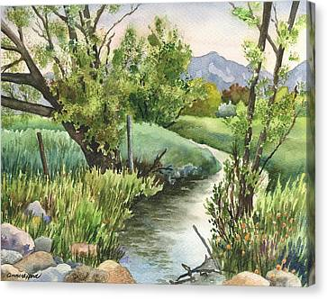 South Boulder Creek Canvas Print by Anne Gifford