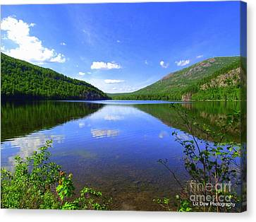 South Branch Pond Canvas Print