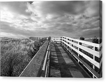 South Cape Beach Boardwalk Canvas Print by Brooke T Ryan