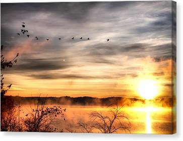 Canvas Print featuring the photograph South Carolina Morning by Lynne Jenkins