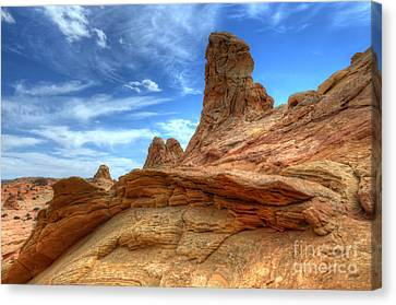 South Coyotte Buttes 8 Canvas Print by Bob Christopher