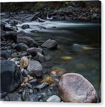South Fork American River Canvas Print by Mitch Shindelbower