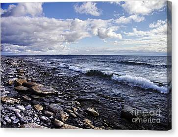 South Shore Amherst Island Canvas Print