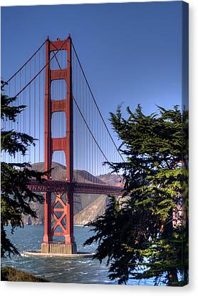 Marin County Canvas Print - South Tower by Bill Gallagher