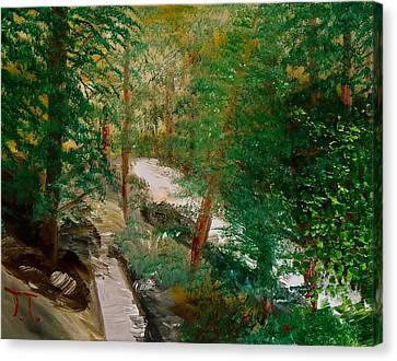 South Trail Cache La Poudre Canvas Print by Troy Thomas