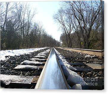 Southbound Canvas Print by Jane Ford
