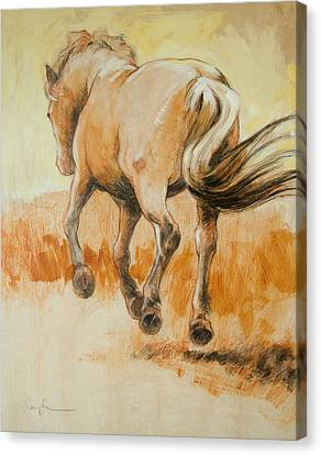 Southbound Canvas Print by Tracie Thompson
