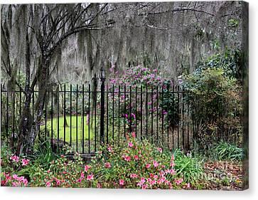 Southern Azalea Garden Canvas Print