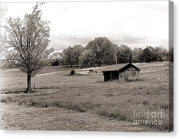 Southern Bw Canvas Print by Chuck Kuhn