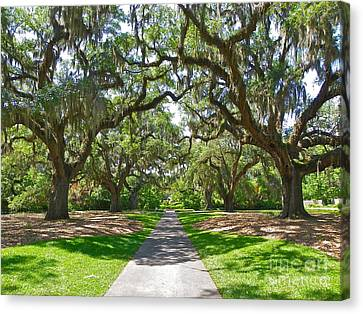 Southern Charm Canvas Print by Eve Spring