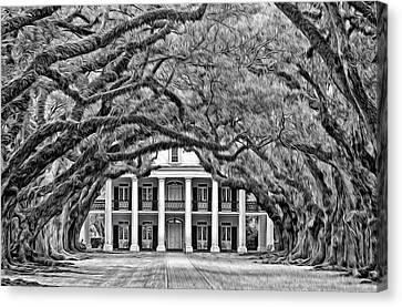 Southern Class Oil Bw Canvas Print by Steve Harrington
