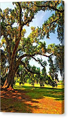 Southern Comfort Painted Canvas Print by Steve Harrington