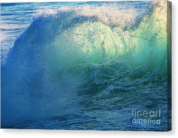 Salt Water Canvas Print - Southern Curl by Marco Crupi