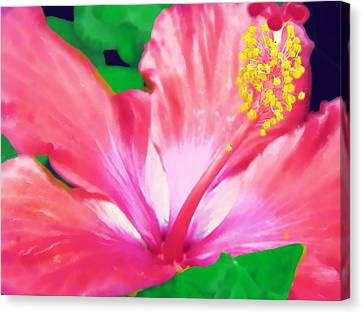 Canvas Print featuring the photograph Southern Hibiscus by Diane Miller