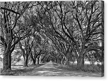 Overhang Canvas Print - Southern Journey - Oil Bw by Steve Harrington