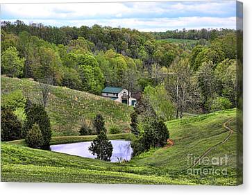 Southern Landscapes IIi Canvas Print by Chuck Kuhn