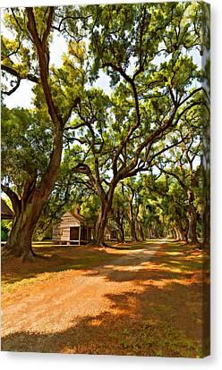 Evergreen Plantation Canvas Print - Southern Lane Paint Filter by Steve Harrington