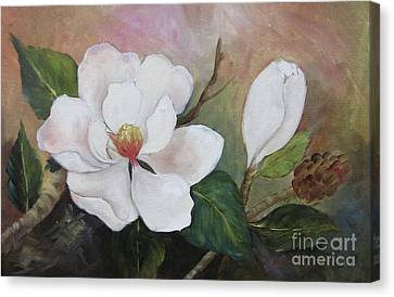Southern Magnolias II By Barbara Haviland Canvas Print