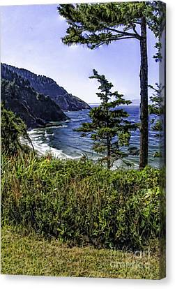 Southern Oregon Coastline Canvas Print