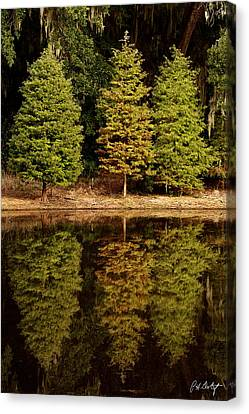Southern Reflections Canvas Print by Phill Doherty