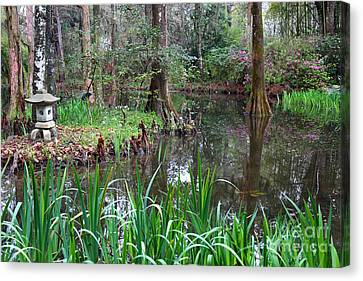 Southern Serenity Canvas Print by Carol Groenen