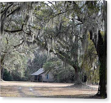 Southern Shade Canvas Print by Al Powell Photography USA
