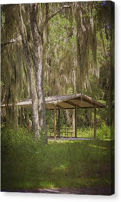 Dunnellon Canvas Print - Southern Shade by Judy Hall-Folde