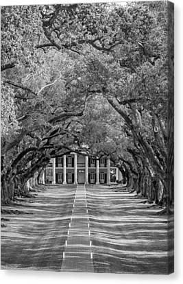 Southern Time Travel Bw Canvas Print by Steve Harrington