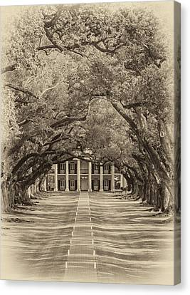 Southern Time Travel Sepia Canvas Print by Steve Harrington